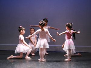 Chen Dance Center School